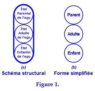 transactional analysis definition essay Third in a series on ta, offering some of the metaphors i think can be useful in conceptualising and dealing with interactions this third video takes a closer look at gimmicks and some different perspectives they can be viewed from — including gimmicks as faulty rules, faulty roles and faulty definitions — and then possible ways.